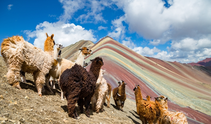 Full Day Tour Montaña de 7 colores - Servicio Grupa2l
