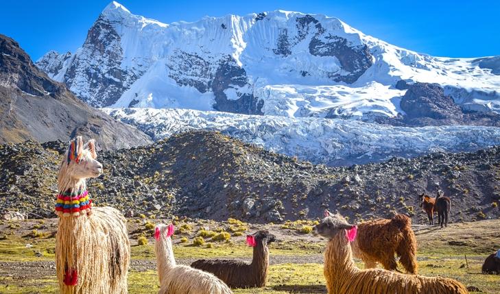 Full Day Tour Montaña de 7 colores - Servicio Grupal3